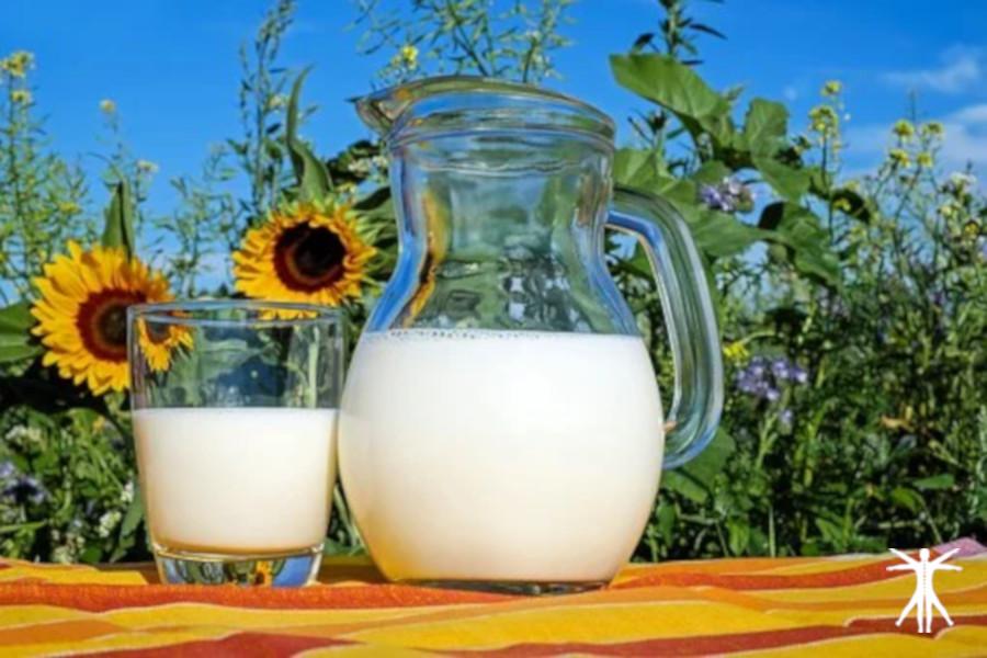 Funciones de la vitamina D y beneficios de un nivel adecuado en el organismo