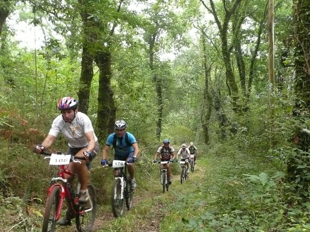 Ruta Bicicleta Alternativa del Camino Francés