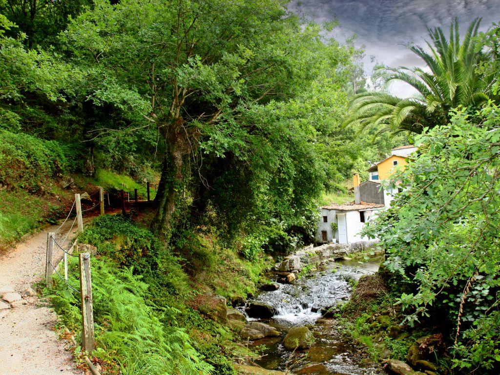 Ruta do Sarela (Santiago)