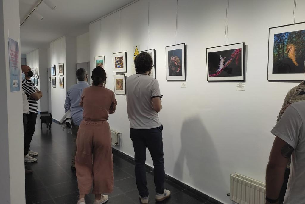 Inaguración de la Exposición de Fotografía Submarina en el Centro Cívico de Malpica