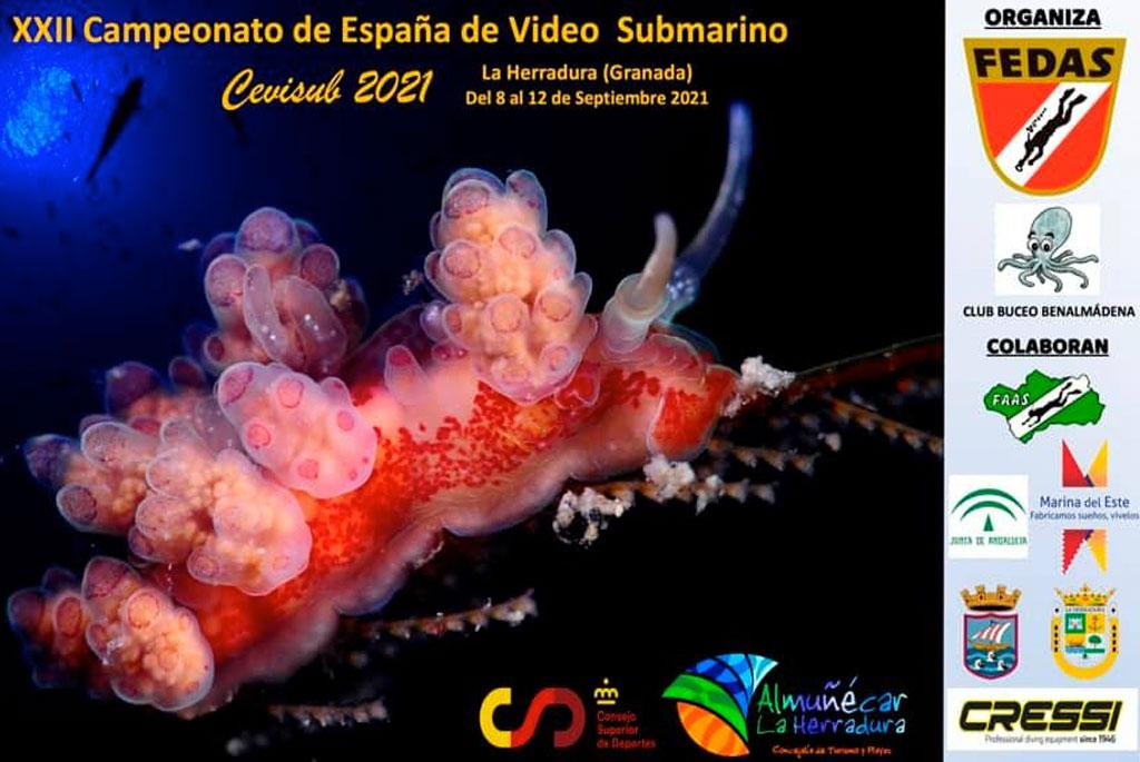 XXII Campeonato de España de Video Submarino (CEVISUB-2021)