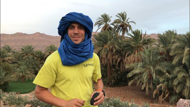 Palmeras del Desierto