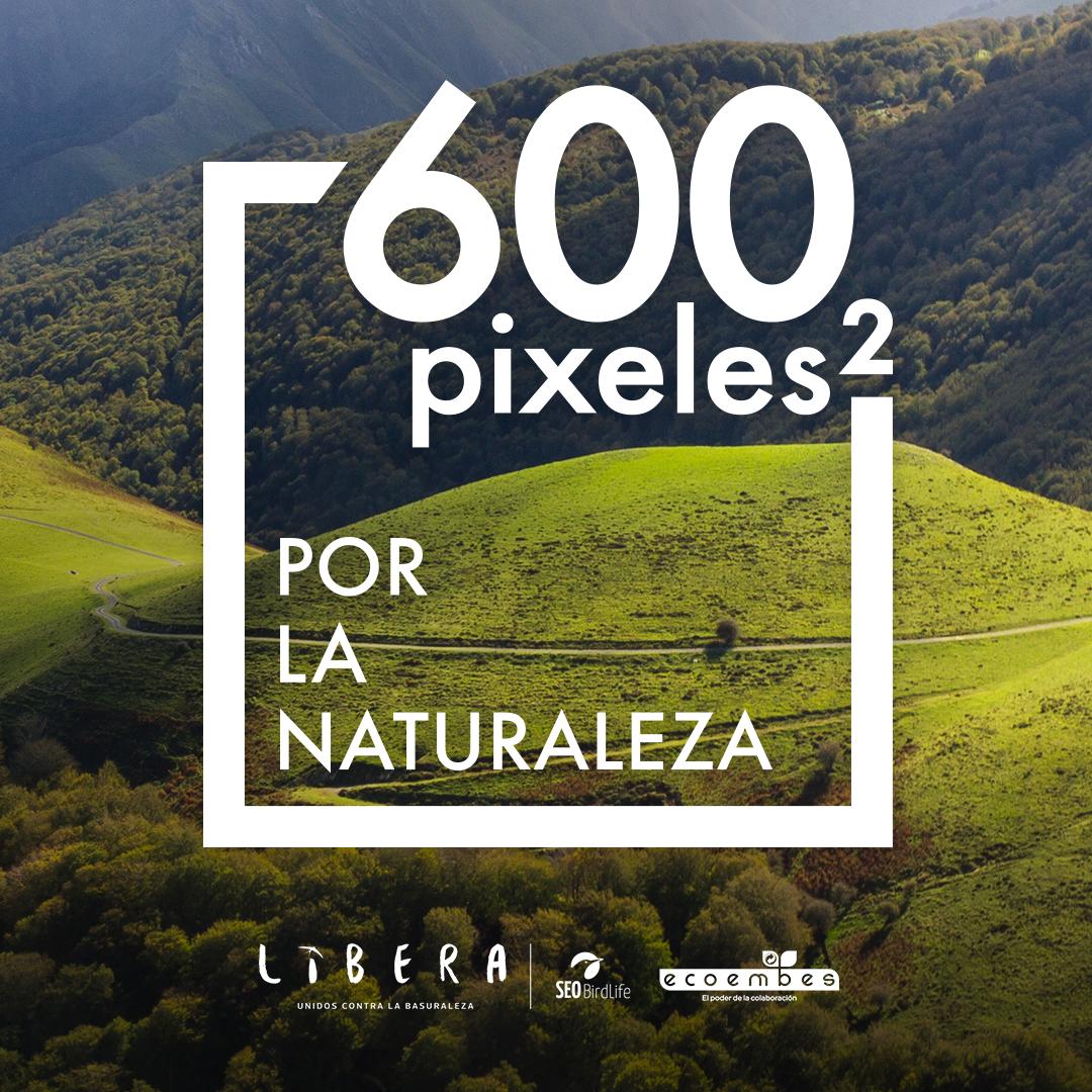 Iniciativa  en las redes #LIBERA600px será la iniciativa de #ProyectoLibera #GreenSportFlag @ecoemebes @Seo