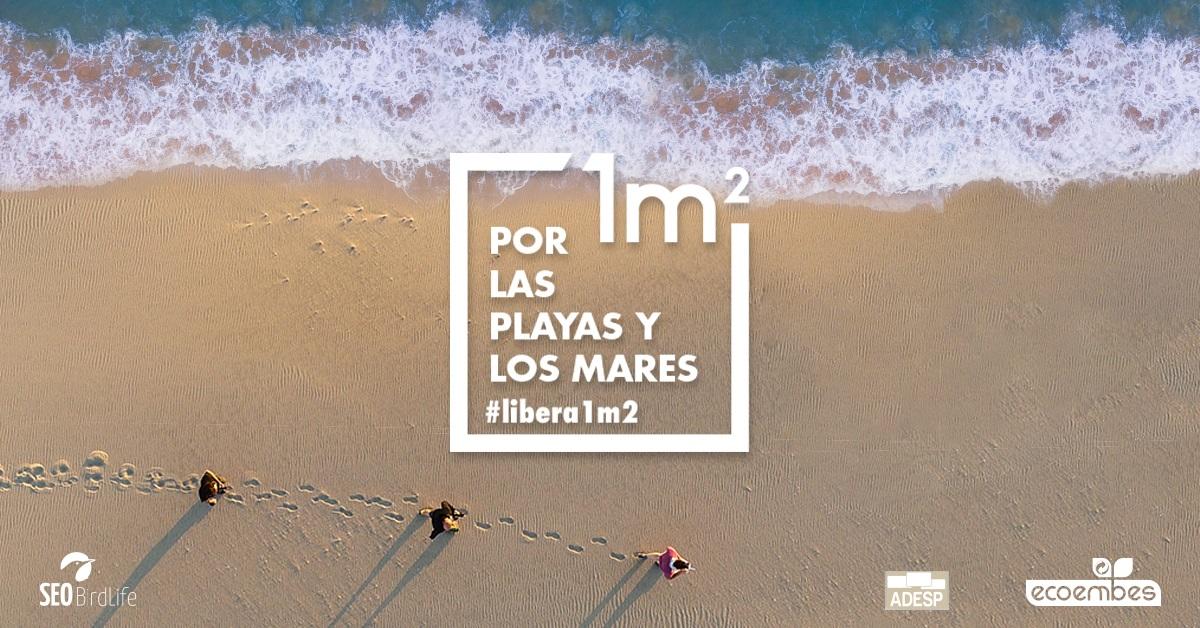 El #DeporteEspañol se suma a la acción ciudadana de limpieza y toma de datos de 1m2 por las playas y los mares