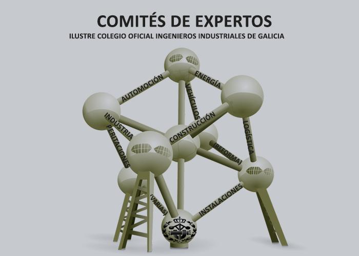 Los 8 Comités de Expertos del ICOIIG