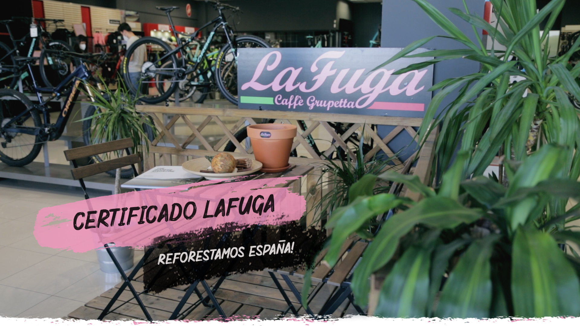 Lafuga garantiza tu contribución a la reforestación en España