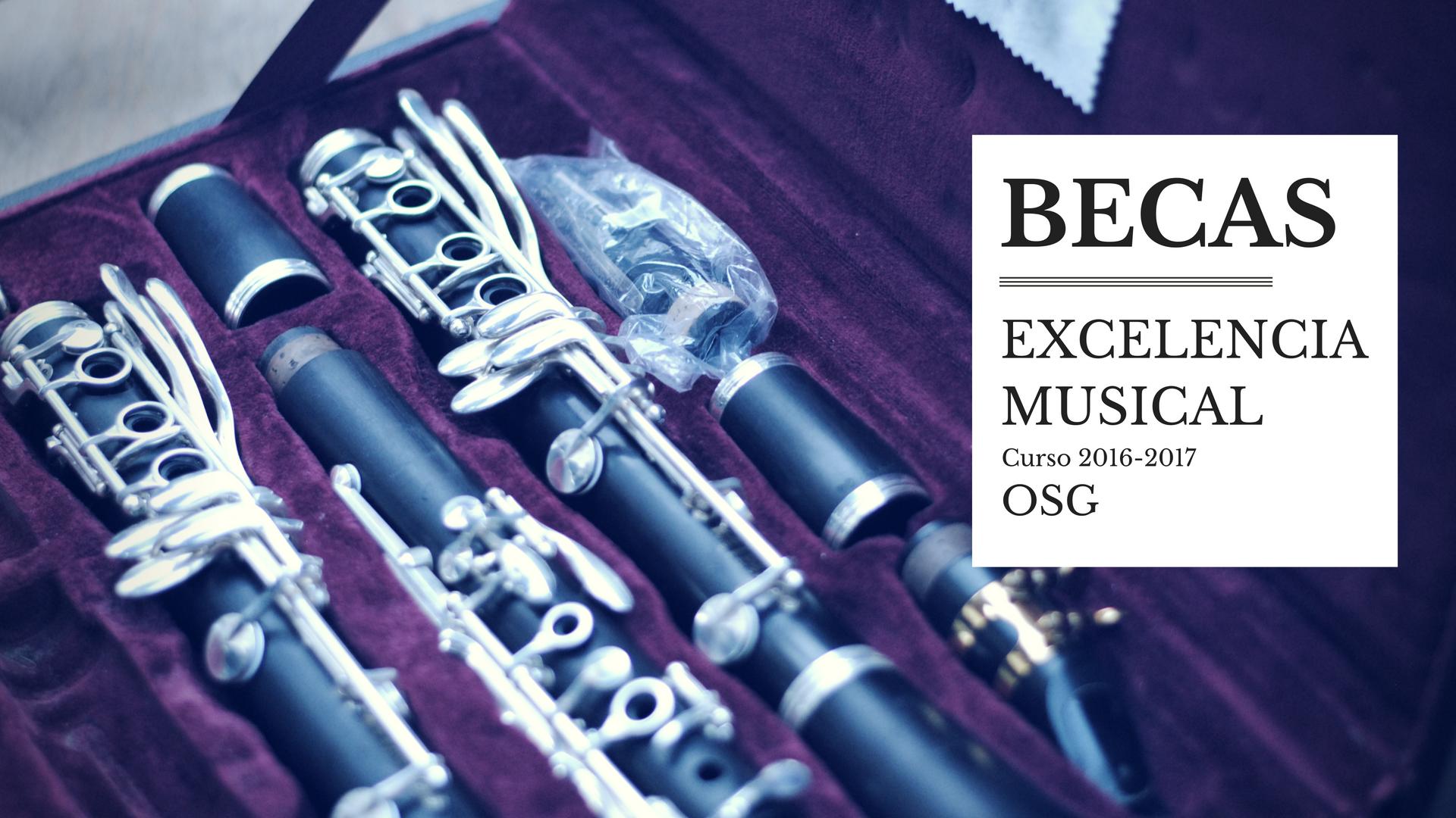 El Consorcio hace público el listado provisional de admitidos a las Becas a la excelencia musical