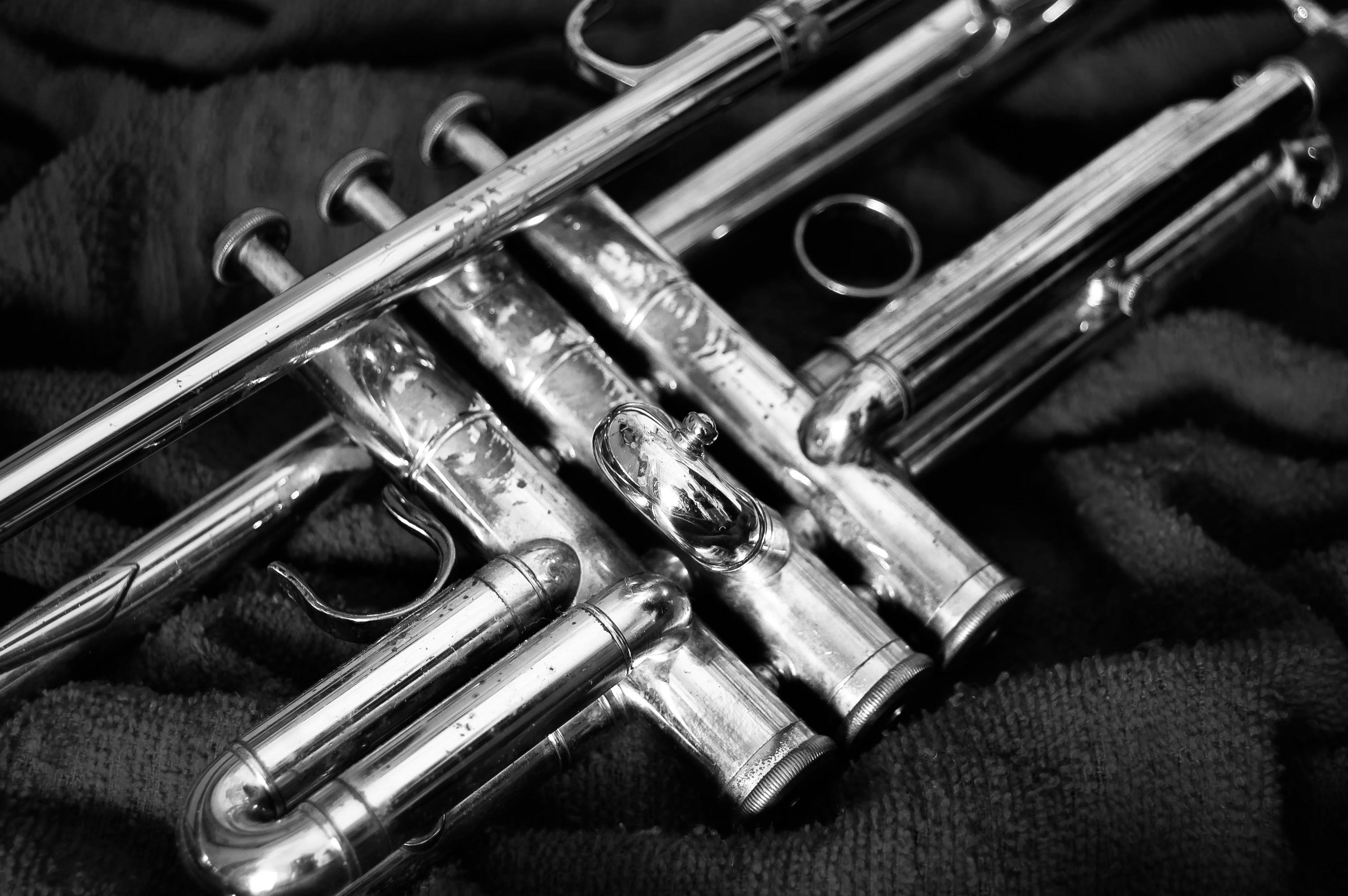 Convocatoria bolsa de empleo temporal trompeta principal asistente y coprincipal